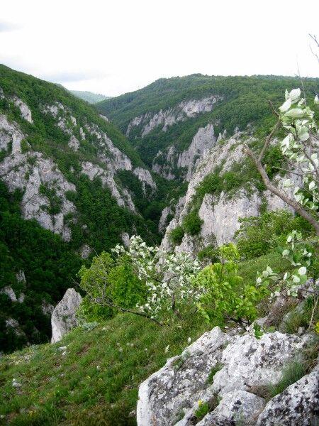 slovakia-slovensky-kras