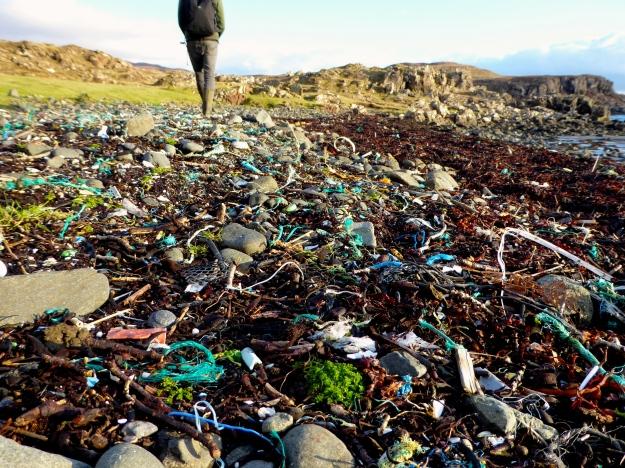 Black Beach Litter