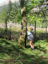 FG at Tiroran forest1